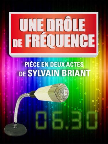 Sylvain Briant - Une drôle de fréquence
